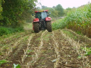 One of the tractor drivers following the forage harvester around the headland