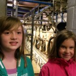 Two young helpers waiting in the milking parlour